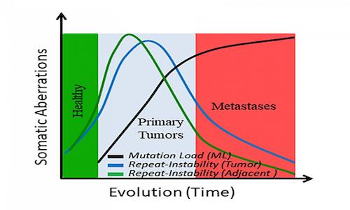 Graph of somatic changes over time